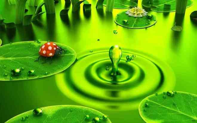 green-scene-water-ripples