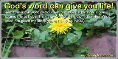 gods_word