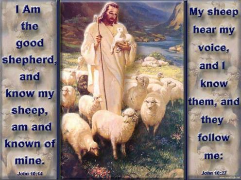 jesus-good-shepherd-16
