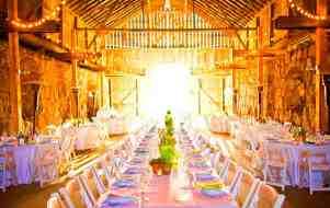 weddinglamb