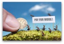 ants_work_ed