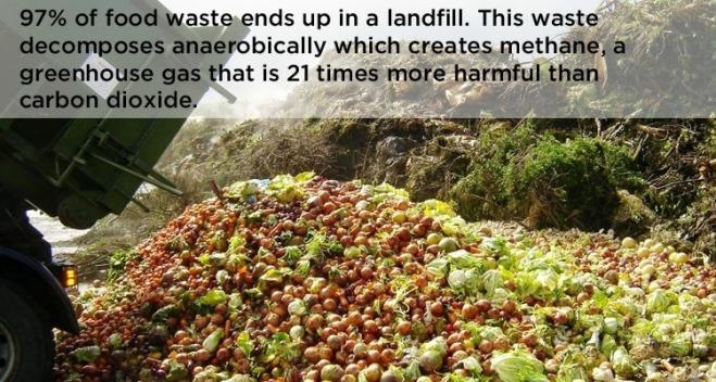 food-waste-dump.jpg