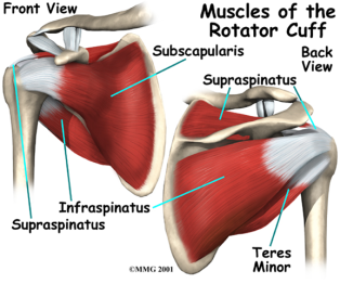 muscle spasms – GOD'S HOTSPOT