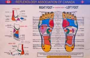 RAC-Foot-chart