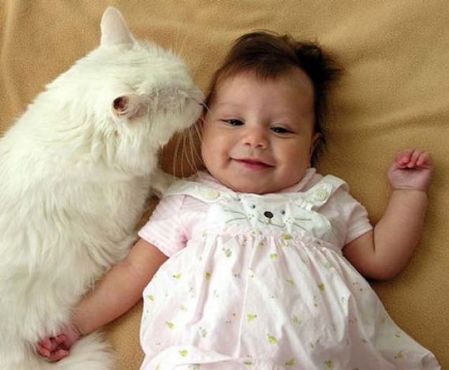 babies_and_cats_being_too_cute_640_47