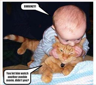 baby_bites_cat