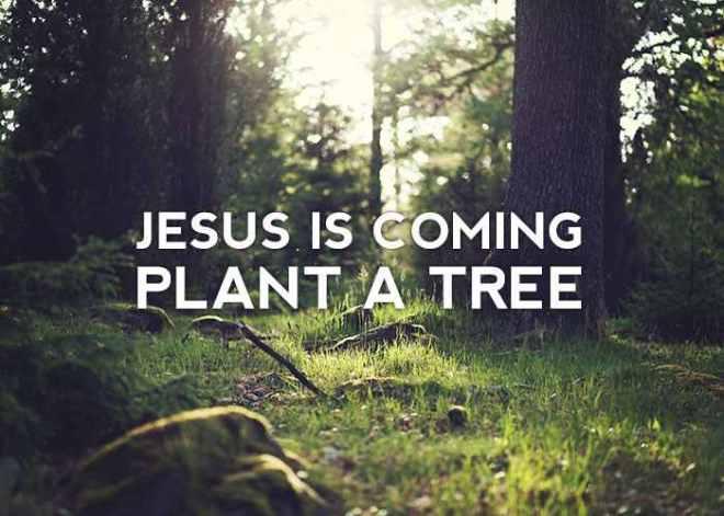 JesusIsComingPlantATree