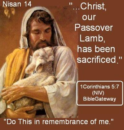 Christ-Our-Passover-Lamb-Has-been-Sacrificed.jpg