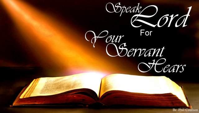 bible-light-0051.jpg