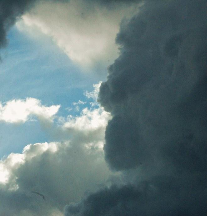 storm-2014-082.jpg