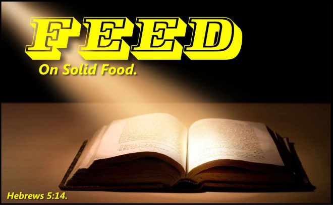 Bible-Solid-Food