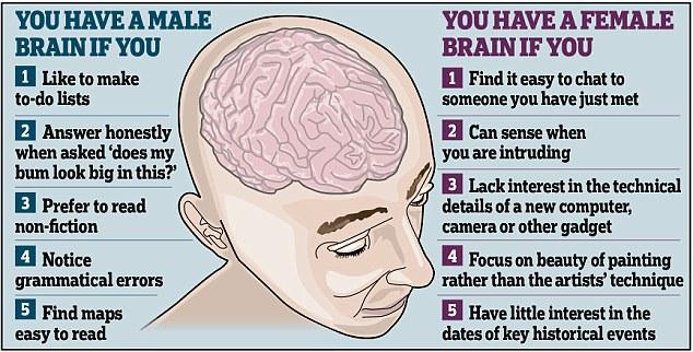 Male vs female brain differences