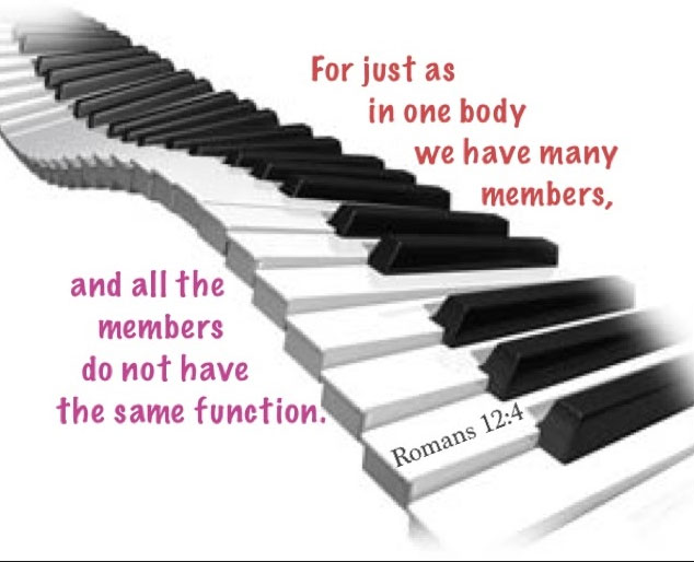 rom-12-4-for-just-as-in-one-body-we-have-many-members-and-all-the-members-of-the-body-do-not-have-the-same-function