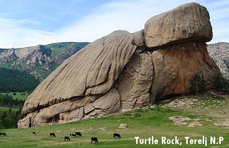 81. Turtle Rock Terelj Mongolia
