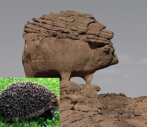 Top-10-Amazing-Animal-Shaped-Rock-Formations-51