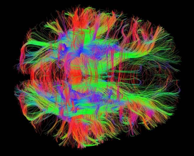 agy-szkenner-1050x846