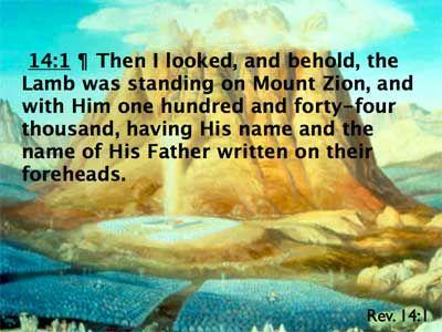 68bb783c7fc894b2a21adeb3eb906c7e--lamb-scriptures
