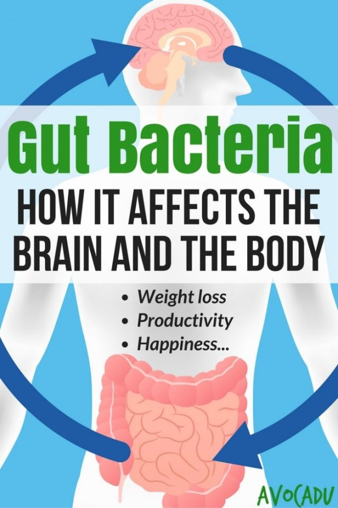 How-Gut-Bacteria-Affects-Brain-and-Body-Pin
