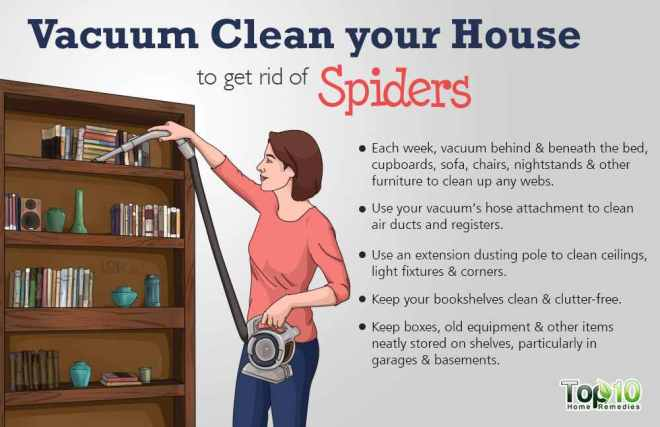 Creative-How-To-Get-Rid-Of-Spiders-In-Bedroom-H80-In-Home-Decoration-Ideas-Designing-with-How-To-Get-Rid-Of-Spiders-In-Bedroom (1)