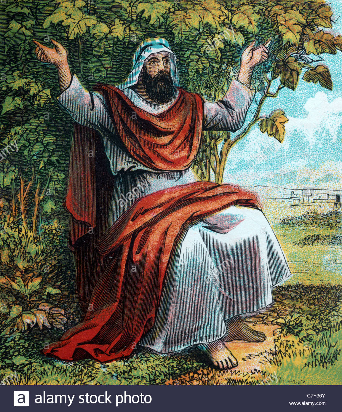 bible-stories-illustration-jonah-sitting-under-the-gourd-from-the-C7Y36Y (1)