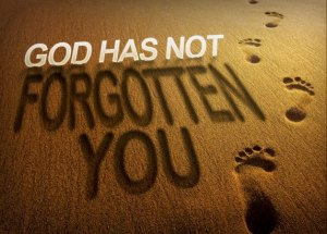 god-has-not-forgotten-you