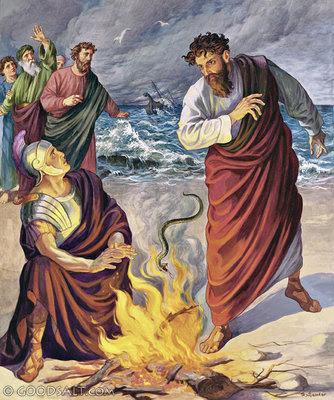 Image result for pauls deliverance from snake bite