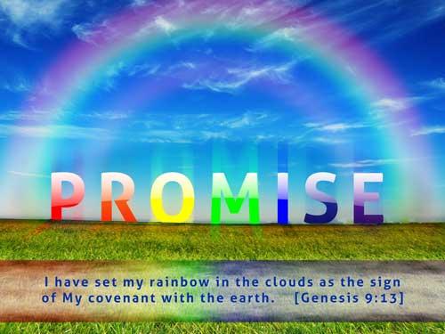 promise_web-500